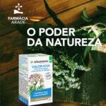 Plantas que promovem um sono reparador
